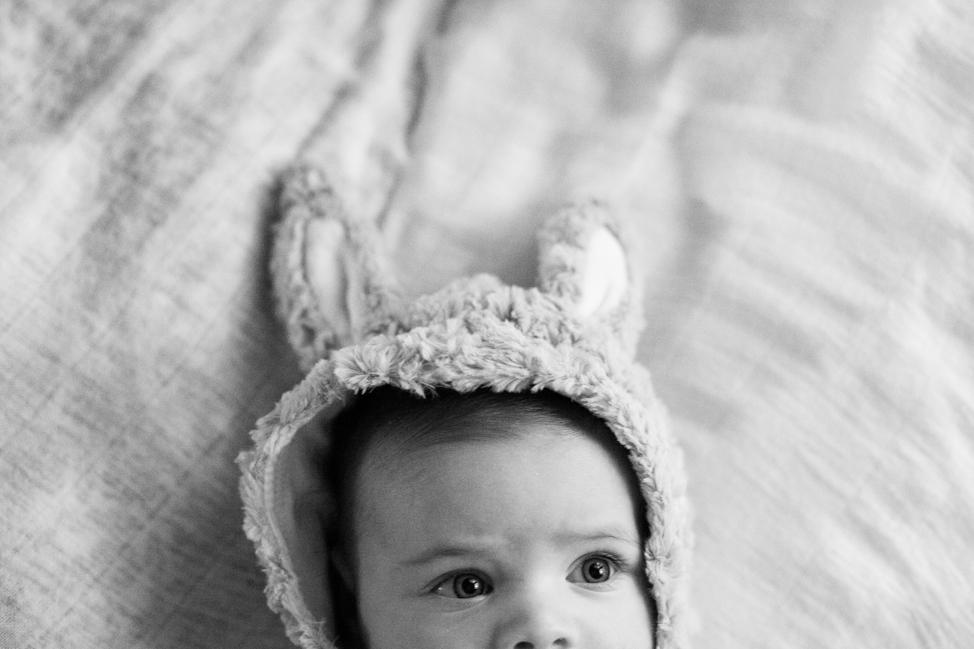 BABIES_ziggy_bunny